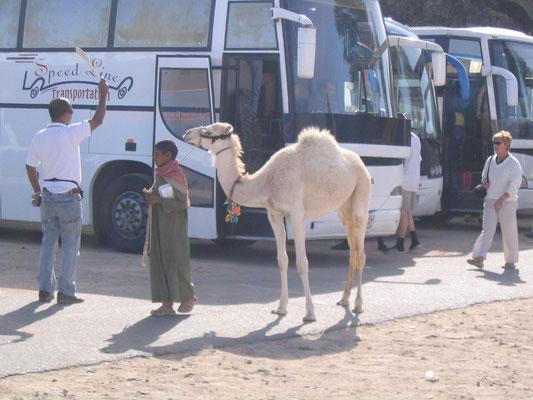 Twee soorten vervoer
