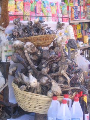 Lama foetus op de heksenmarkt in La Paz