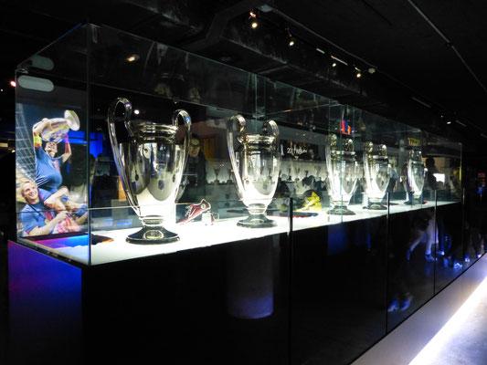 Veel titels gewonnen