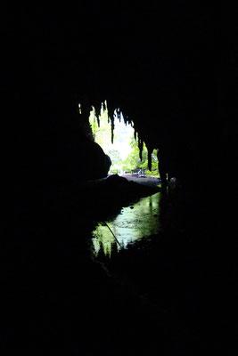 Caripe - Guacharo grot
