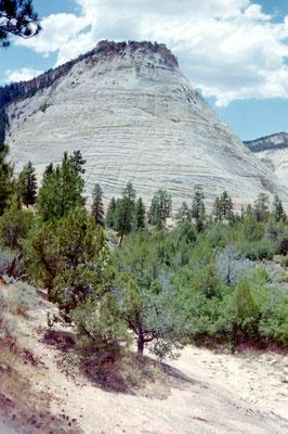 Zion Nationaal Park