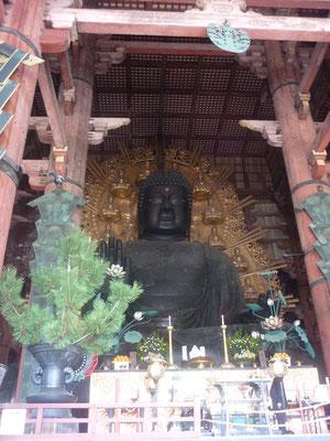 de grootste bronzen Boeddah ter wereld