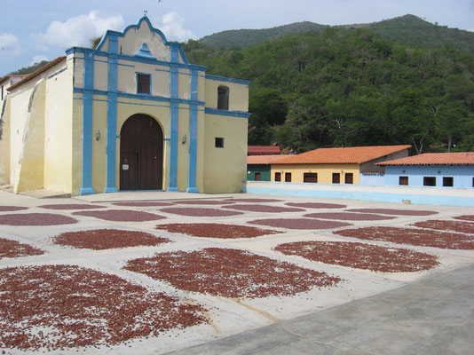 Chuao - op het dorpsplein ligt cacao te drogen
