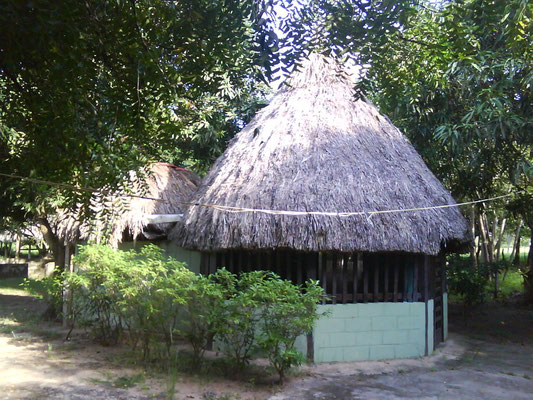 Hut in de Llanos