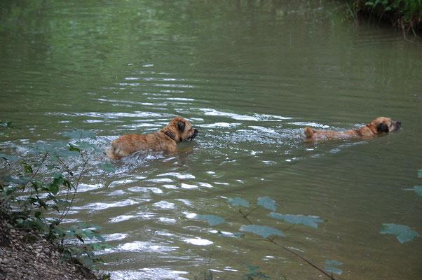 Luna und Jackie schwimmen