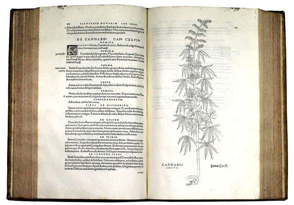 Adjugé 17 040 € - De historia stirpium commentarii insignes ..., L. FUCHS, un volume in folio, Bâle, 1542