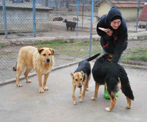 Tilda mit Ben und Coco