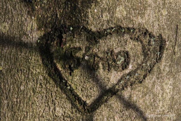 Wo die Liebe verewigt wurde