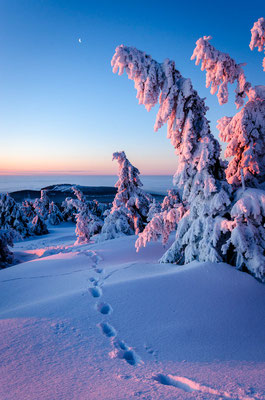 Brocken Sunrise