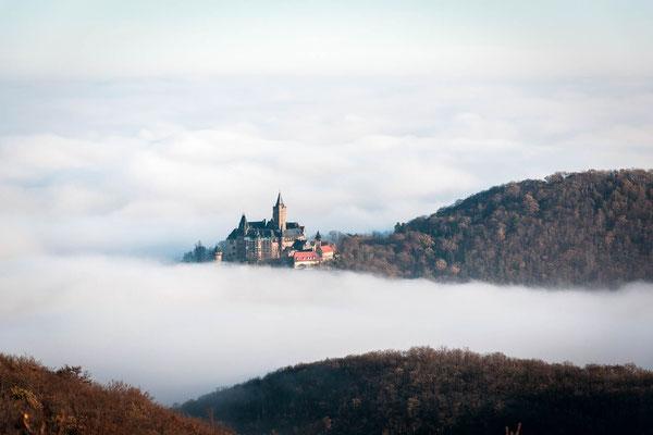 Schloss Wernigerode Nebel 2