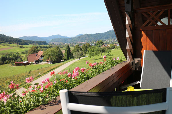 Balkon Tulpenbaum Ausblick