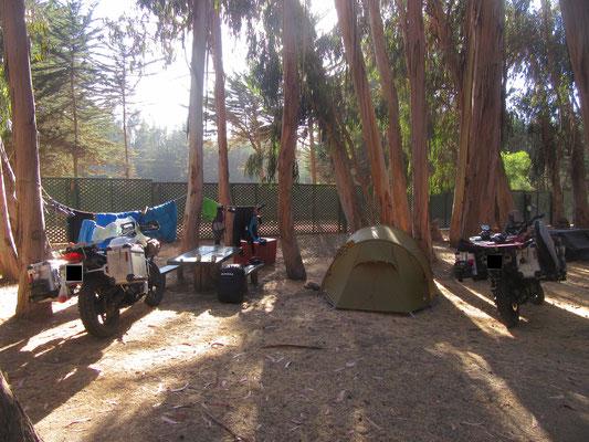 Camping in Pichidangui