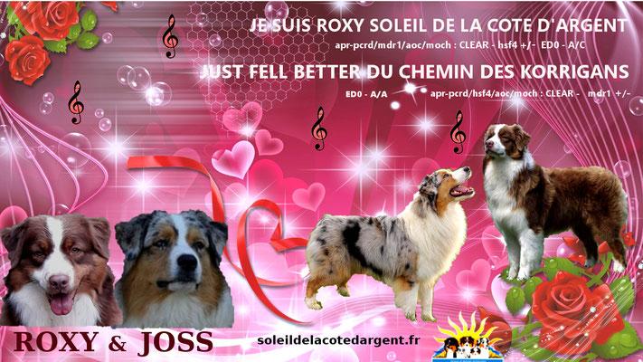 Roxy & Joss portée 2016