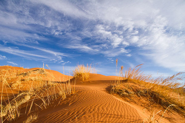 Sossusvlei: dune Elim