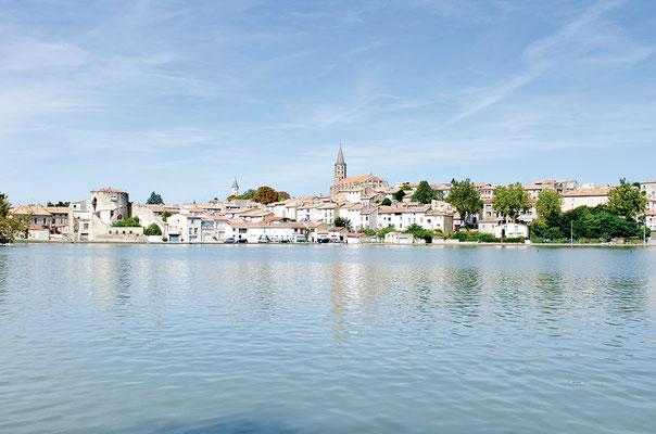 Le grand bassin fait partie intégrante du paysage de la cité chaurienne. Présent depuis plus de trois siècles au pied de la ville, il en est le miroir. Son aménagement récemment inauguré permet d'en faire le tour par un chemin piéton de 5 km