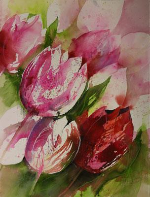 Tulpen IV, Aquarell auf Hadernbütten, 56 x 76 cm, 2017, Preis auf Anfrage