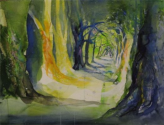 Kastanienallee im Schlosspark Putbus (entstanden in einem pleinair-Kurs mit Wilhelm Fikisz), Aquarell auf Hadernbütten, 76 x 57,5 cm, 2015, Preis auf Anfrage
