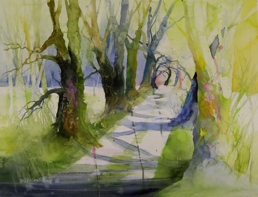 Lindenallee Hütscheroda, Aquarell auf Hadernbütten, 76 x 56 cm, 2016, Preis auf Anfrage
