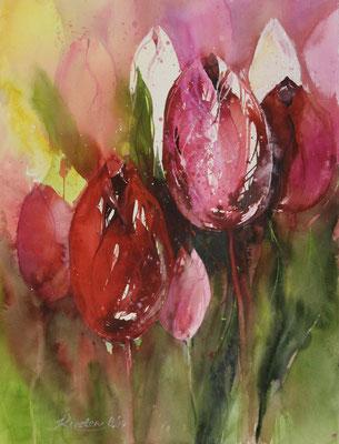 Tulpen II, Aquarell auf Hadernbütten, 56 x 76 cm, 2017, Preis auf Anfrage