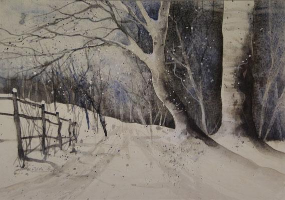 Winterwald 1, Aquarell auf Ingres-Echt-Bütten, 48 x 31 cm, 2015, Preis auf Anfrage