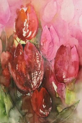Tulpen I, Aquarell auf Hadernbütten, 56 x 76 cm, 2017, Preis auf Anfrage