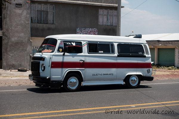 Der VW Bulli...keine Seltenheit im Straßenbild