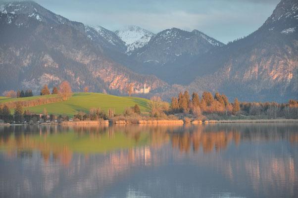 Hopfensee mit Blick auf Schloss Neuschwansteim