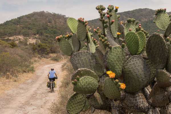 Dirt zwischen Guanajuato und San Miguel de Allende