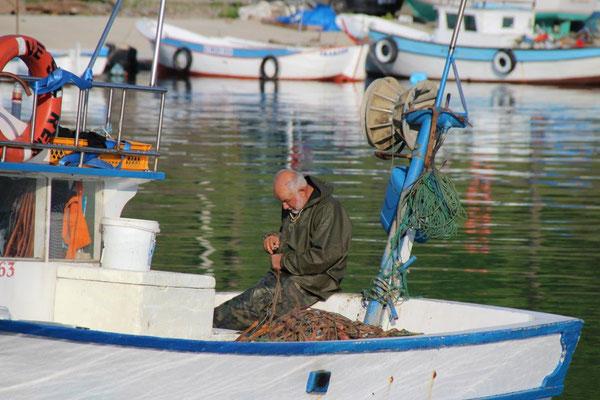 Füh am Morgen nach einer Nacht in einem kleinen Fischerhafen
