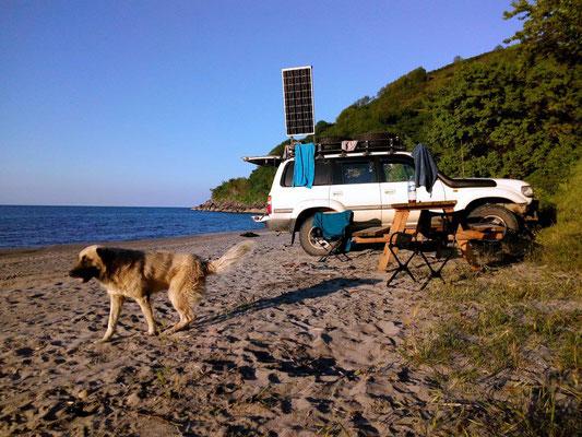 den Wachhund gibt es hier am Strand gratis dazu