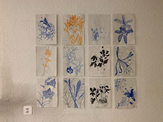 Kräuterblüten, Tusche auf Löschpapier, Faden, je 21 x 29.7 cm, 2020
