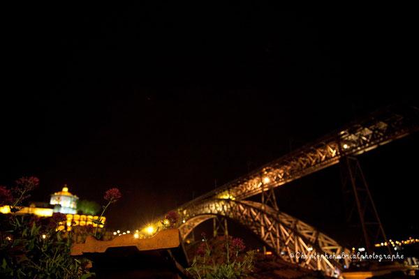 Ponte Dom Luizi
