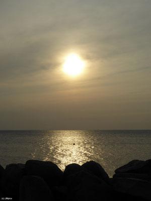 Abendsonne an Malmös Küste (Scaniaparken)