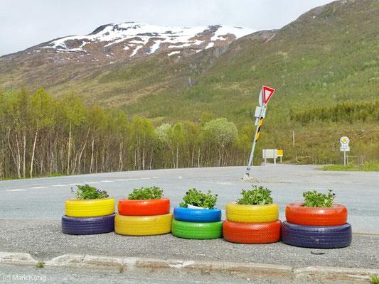 Bunt angemalte Reifen als Pflanzgefäße an einer Kreuzung auf Senja