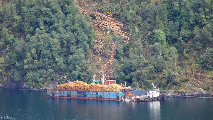 Aus der Ferne wirken gefällte Bäume wie Streichhölzer an einem Berghang eines Sees und in einem Ladekahn (Ryfylke)