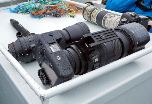The selection of cameras from some guests indicates a place for nature photographers