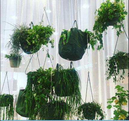 Serax paniers plantes stand Maison & Objet septembre 2018 Isabelle Mourcely Décoration, décoratrice UFDI Tours Chinon Centre Indre et Loire 37