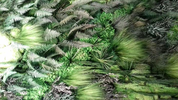 Cadre Vert mur de plantes stabilisées stand Maison & Objet septembre 2018 Isabelle Mourcely Décoration, décoratrice UFDI Tours Chinon Centre Indre et Loire 37