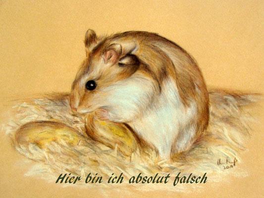Hamsterzeichnung, Pastellkreide und Buntstifte