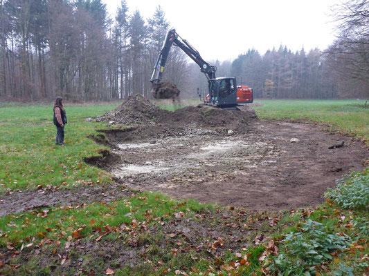 Beginn der Arbeiten am dritten Gewässer - diesmal für den Laubfrosch geplant, also eher flach.