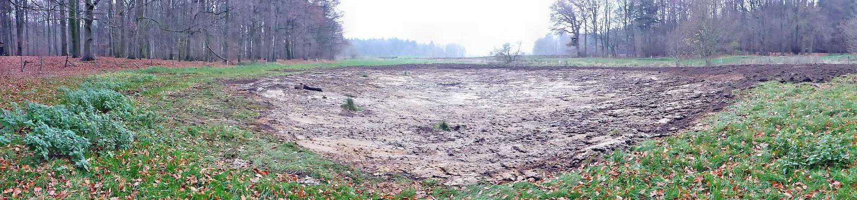 Das fertige 1. Kammmolchgewässer - fehlt nur noch ergiebiger Regen...