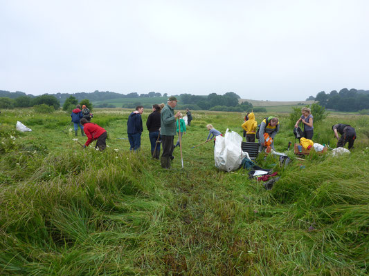 Wir freuen uns über einen neuen Teilnehmerrekord: 18 Erwachsene und 9 Kinder kamen zum Landschaftspflegeeinsatz.