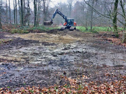 Sanierung eines Teiches am Waldrand - die Schlammschicht wird in einem Teil des Gewässers bis auf den mineralischen Untergrund entfernt.