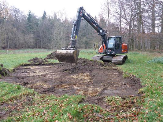 """Quasi der """"erste Spatenstich in groß"""": Beginn der Arbeiten am neuen Kammmolchgewässer. Es wird etwas größer und tiefer als die Laubfroschgewässer."""