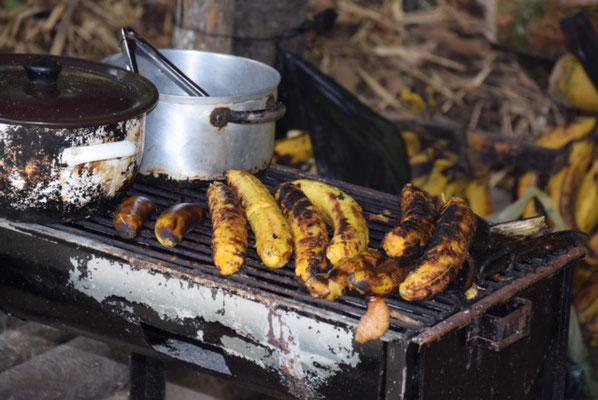 gegrillte Kochbananen, die es auch in Ambato auf den Straßen gibt und eine leckere Made