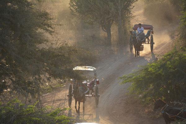 Kutschen-Taxen im Tempelfeld von Alt-Bagan