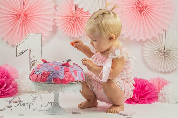 """Cake Smash Fotoshooting """"Little Girl"""""""