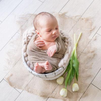Newbornshooting mit Props