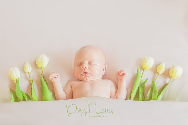 Neugeborenenshooting mit Blumen