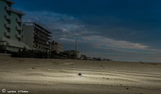 """2014...""""Es kommt immer drauf an, wie man eine Sache beleuchtet"""", Nikon Coolpix P520"""